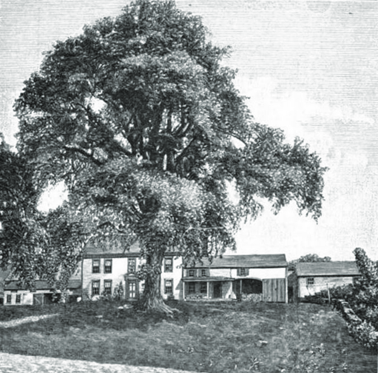 Sudbury Historical Society on